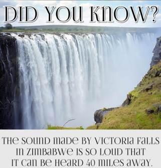 fun fact 11